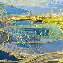 Campos de arroz de Yuanyang en China